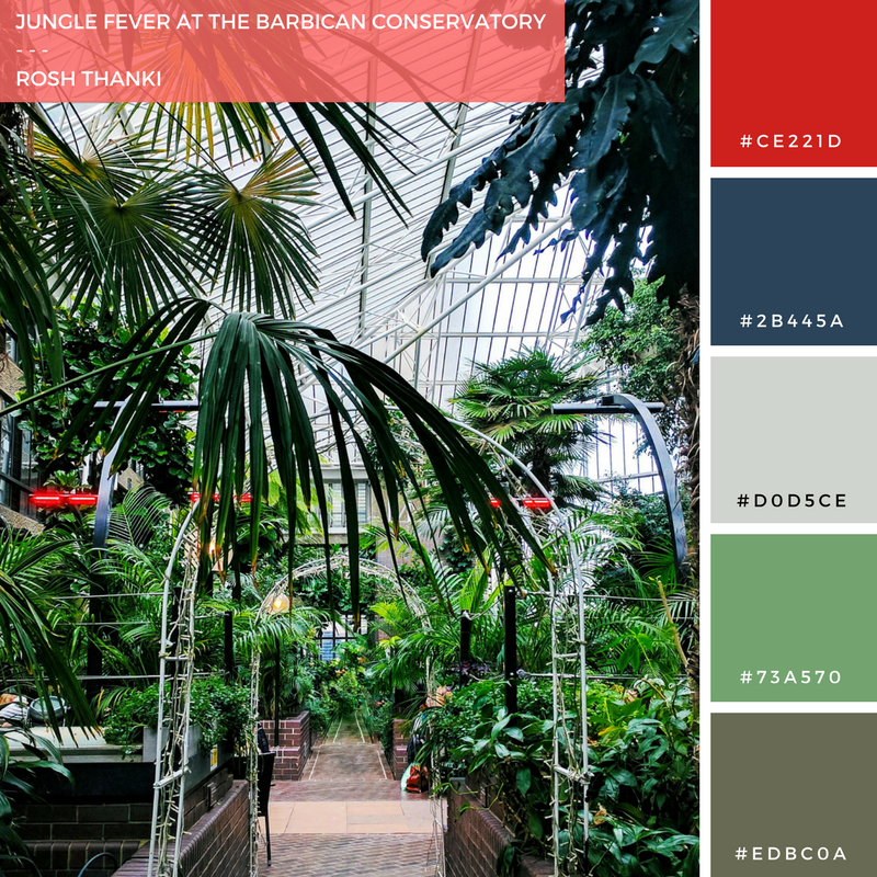 Colour Palette for Jungle Fever at the Barbican Conversatory by Rosh Thanki