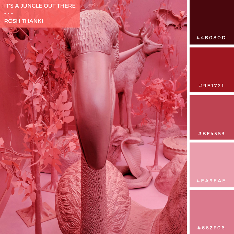 Colour Palette for It's a Jungle Out There by Rosh Thanki, Pink Safari, Google Simulation Room to win a Google Home Mini