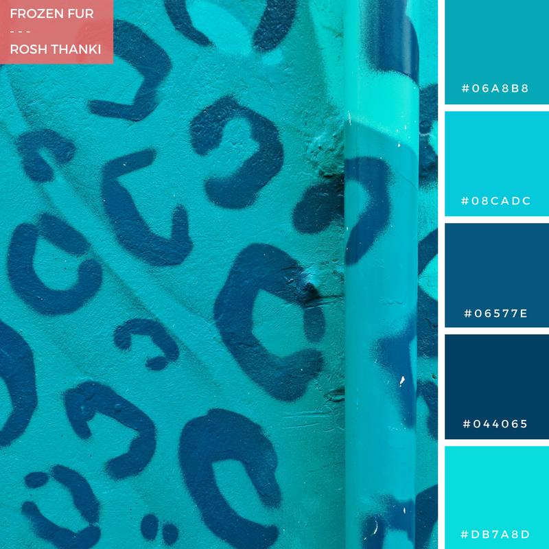 Colour Palette for Frozen Fur by Rosh Thanki, Juju Brighton's blue leopard print store front, street art
