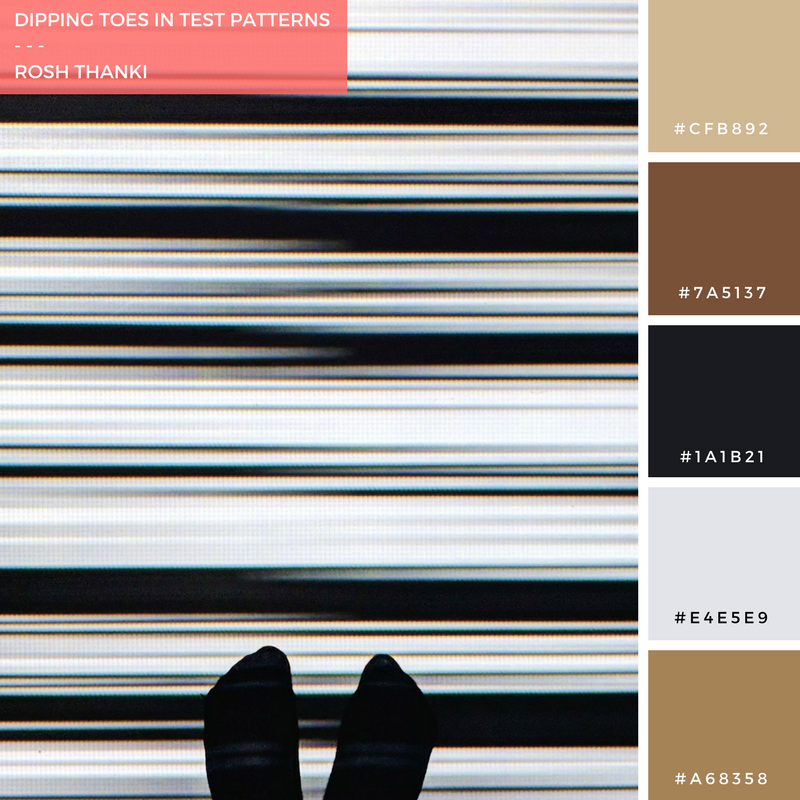 Colour Palette for Dipping Toes in Test Patterns by Rosh Thanki, ryoji ikeda's artwork at 180 the strand