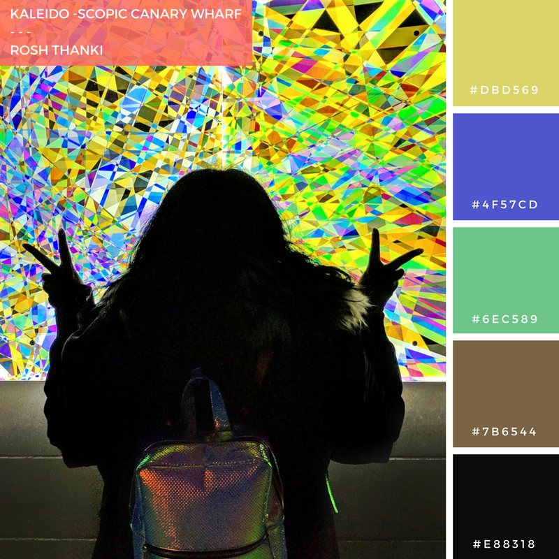 Colour Palette for Kaleidoscopic Canary Wharf by Rosh Thanki, sihouette back portrait in front of Jessica Lloyd Jones' hologram artwork at the winter lights festival