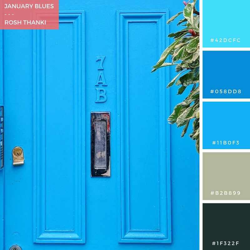 Colour Palette for January Blues by Rosh Thanki, blue door at simmons cocktail bar in mornington crescent