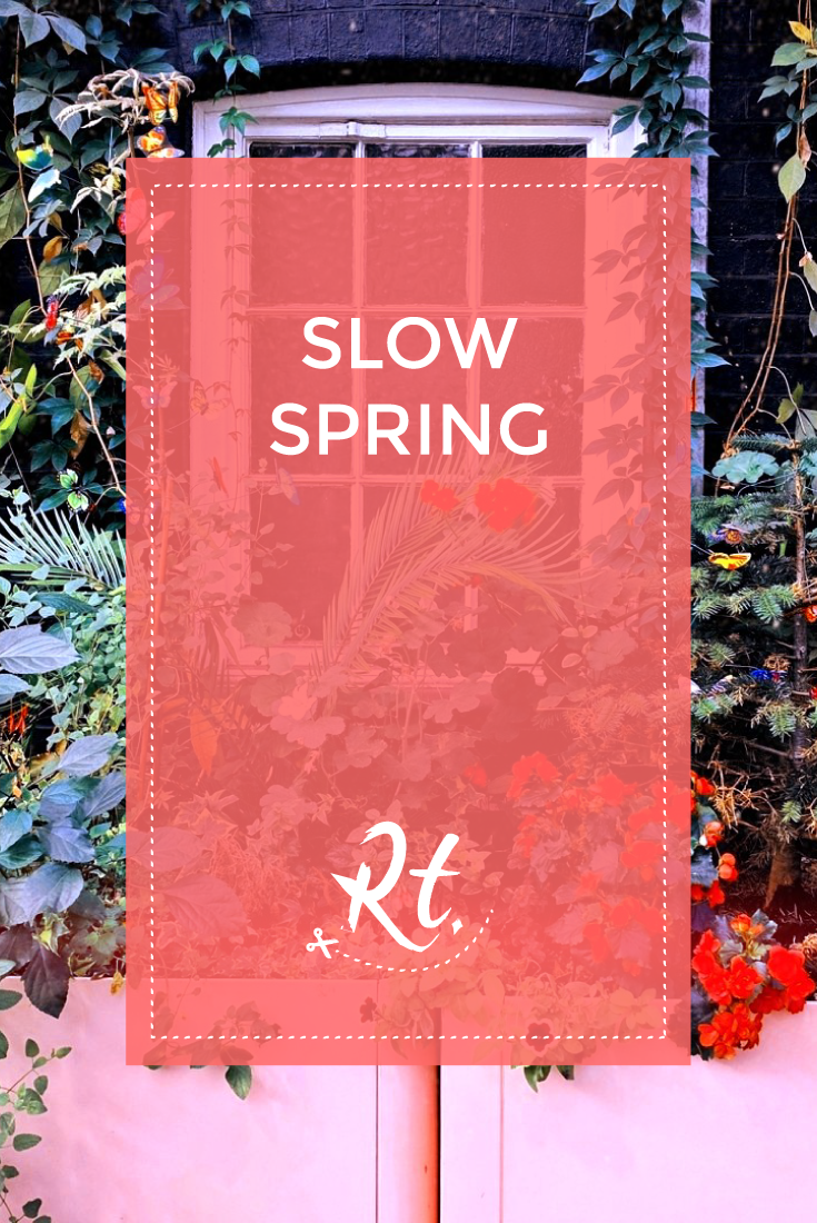 Slow Spring by Rosh Thanki, edgware road tube station floral display
