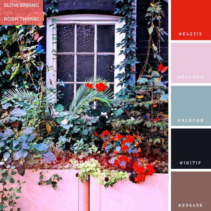 Colour Palette for Slow Spring by Rosh Thanki, edgware road tube station floral display
