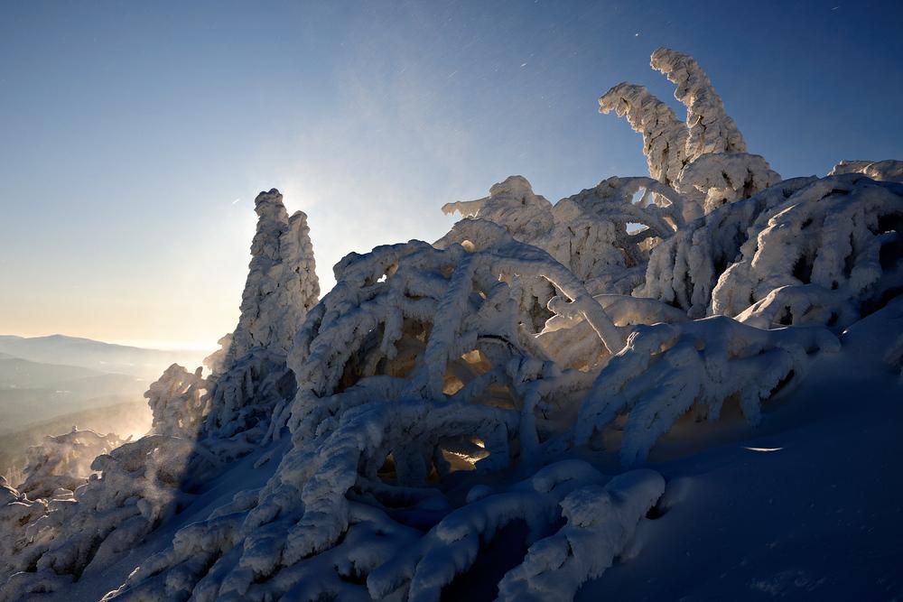 Frozen Light