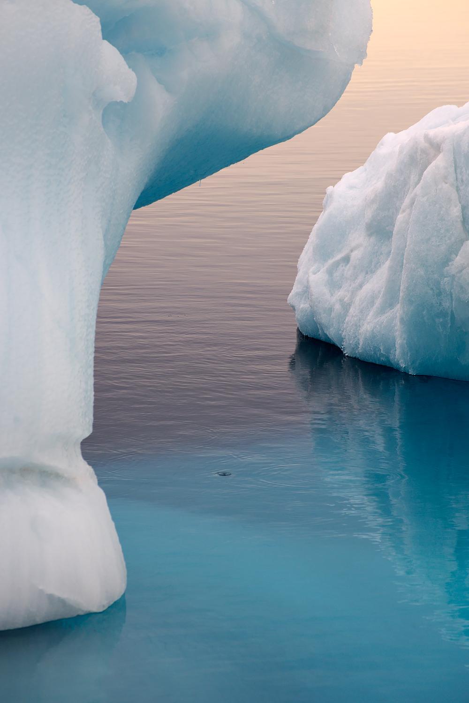 Svalbard (2009)
