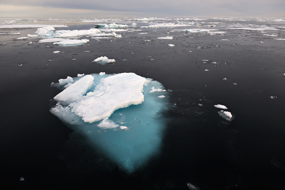 Silent Sea With Ice Floes