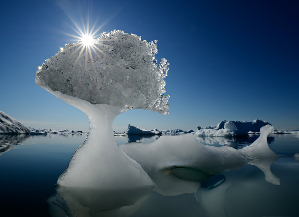 Natural Ice Sculptures – Greenland 2012