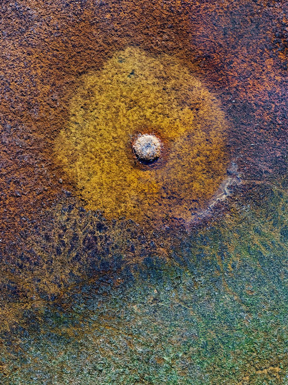 Mud Dot