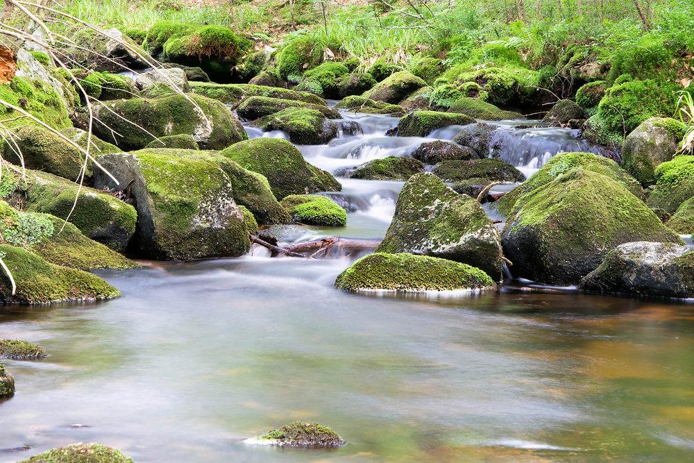 Fluss_2.jpg