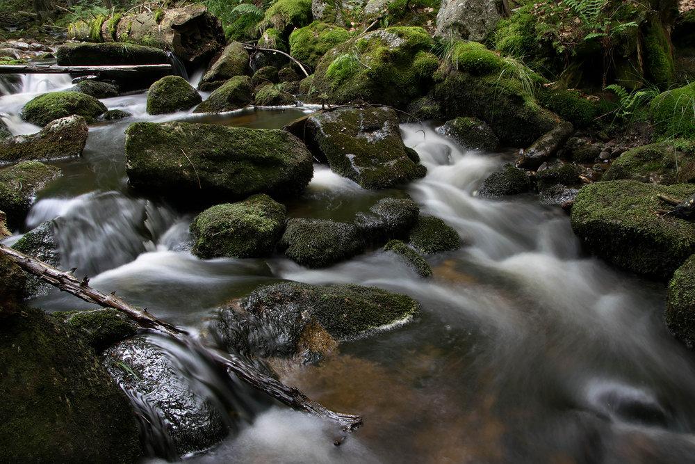 Fluss_3.jpg