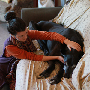 Treating clients' beloved, elderly Great Dane at home
