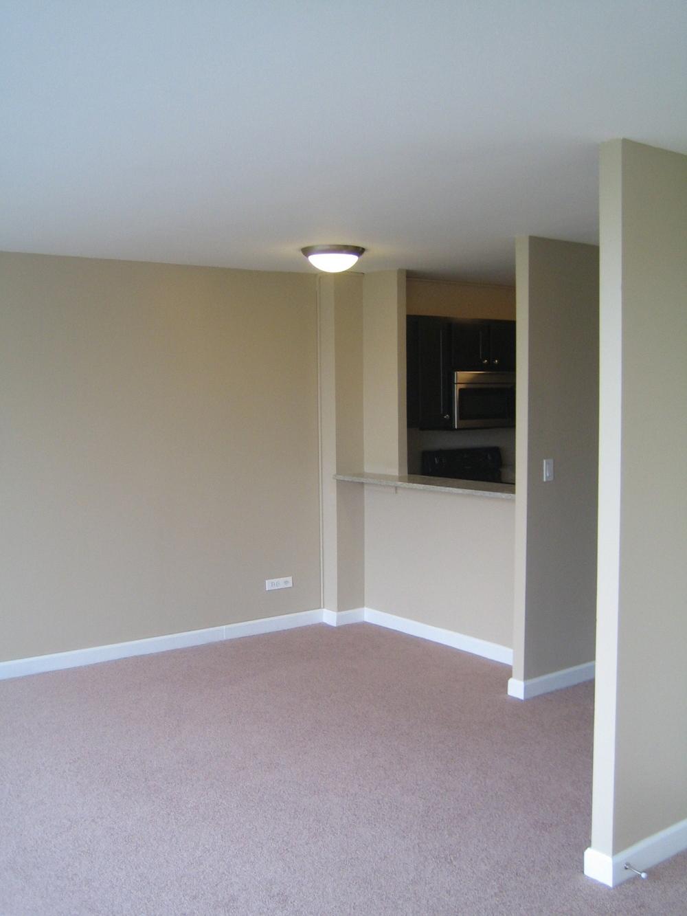 Rental Properties Mv Construction I Chicago Construction