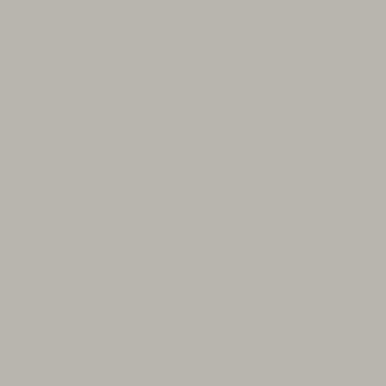 Benjamin Moore's Gray Huskie 1473