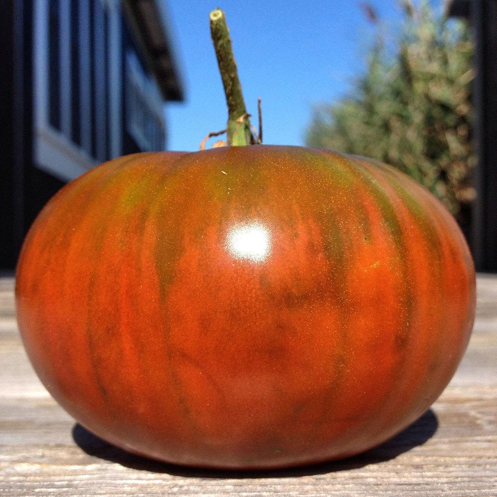 tomato 2015.jpg