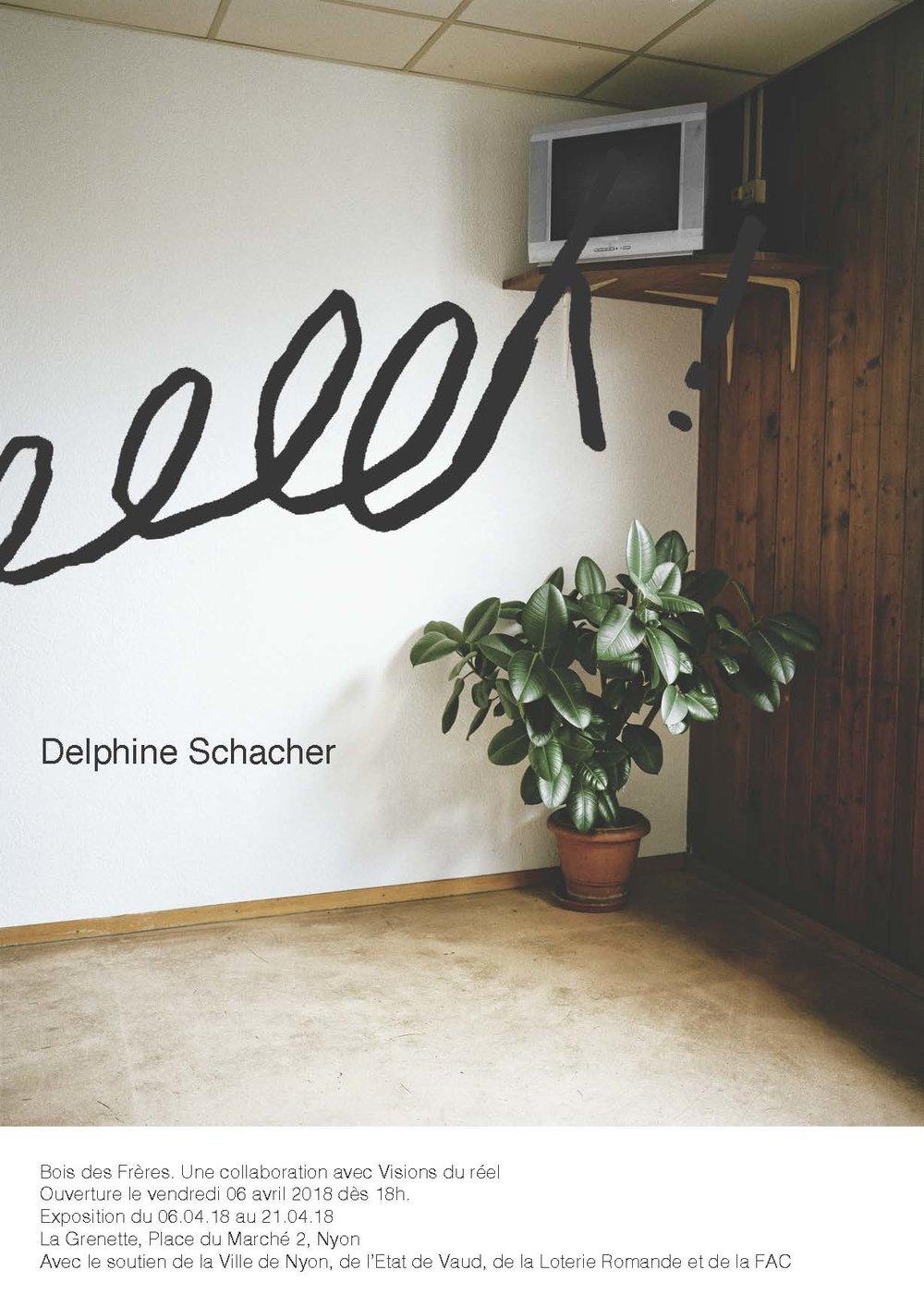Flyer_delphine2.jpg