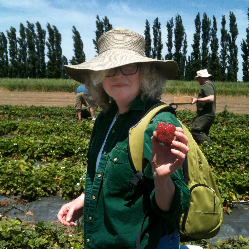 Liz picks a ripe strawberry at Eatwell Farm during a Strawberry Day event.