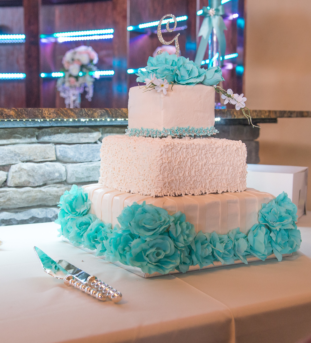 greensboro wedding photographer wedding cake
