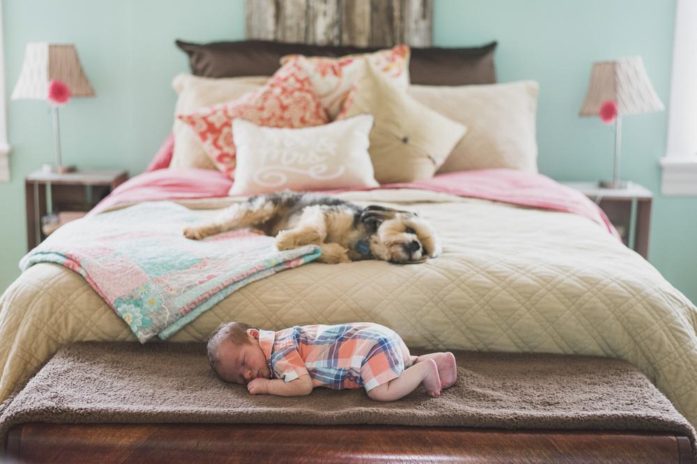Newborn_lifestyle_family_session_lynchburg_va_photos344.jpg