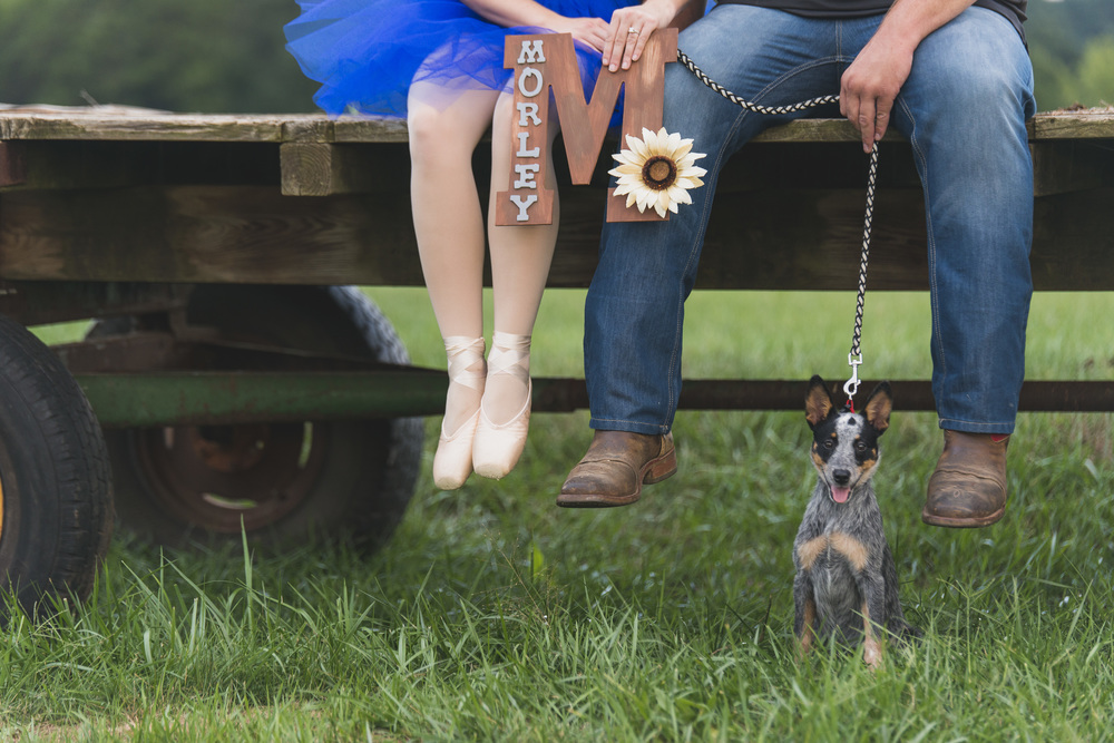 Engagement_session_farm_ranch_country_dance_ballet_lift_altavista_Lynchburg_VA_Photos20150821_0533.jpg