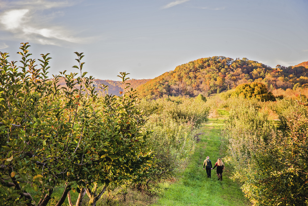 fall_romantic_orchard_engagement_session_lynchburg_va011.jpg