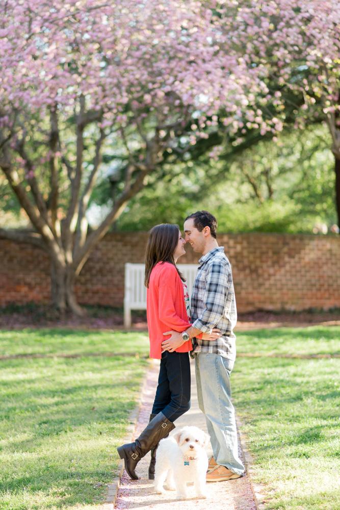 charlotsville.va.engagement.session.uva.dog.love.spring.blooms225.jpg