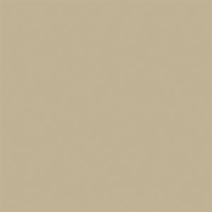 NEW_HOLLAND_BEIGE-74-T603-WR-LOW_LUSTER .jpg