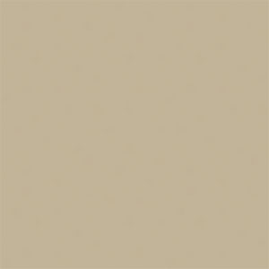 NEW_HOLLAND_BEIGE-74-T624_With_Halox-WR-LOW_LUSTER .jpg