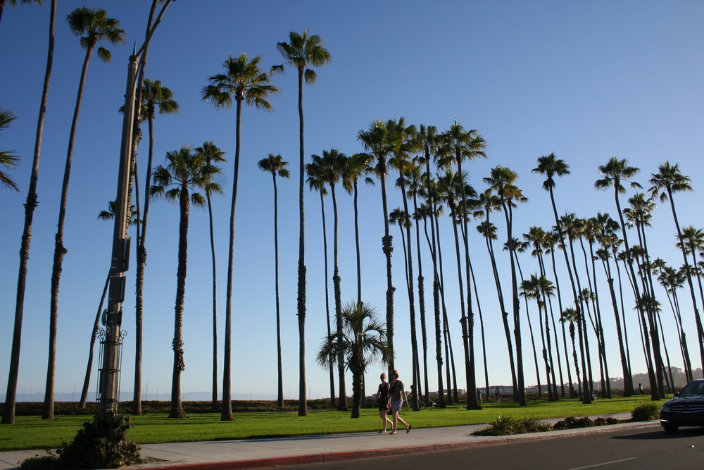 "The towns on the central and southern coasts California enjoy a different kind of ""skyline."""