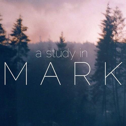 studymark.jpg