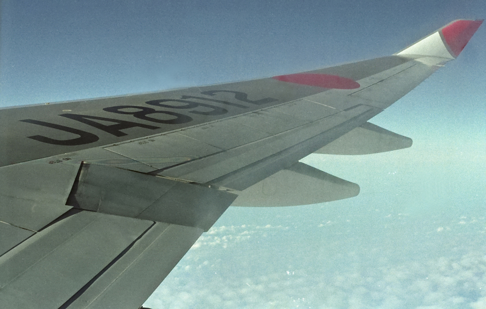 JAL_wing.jpg