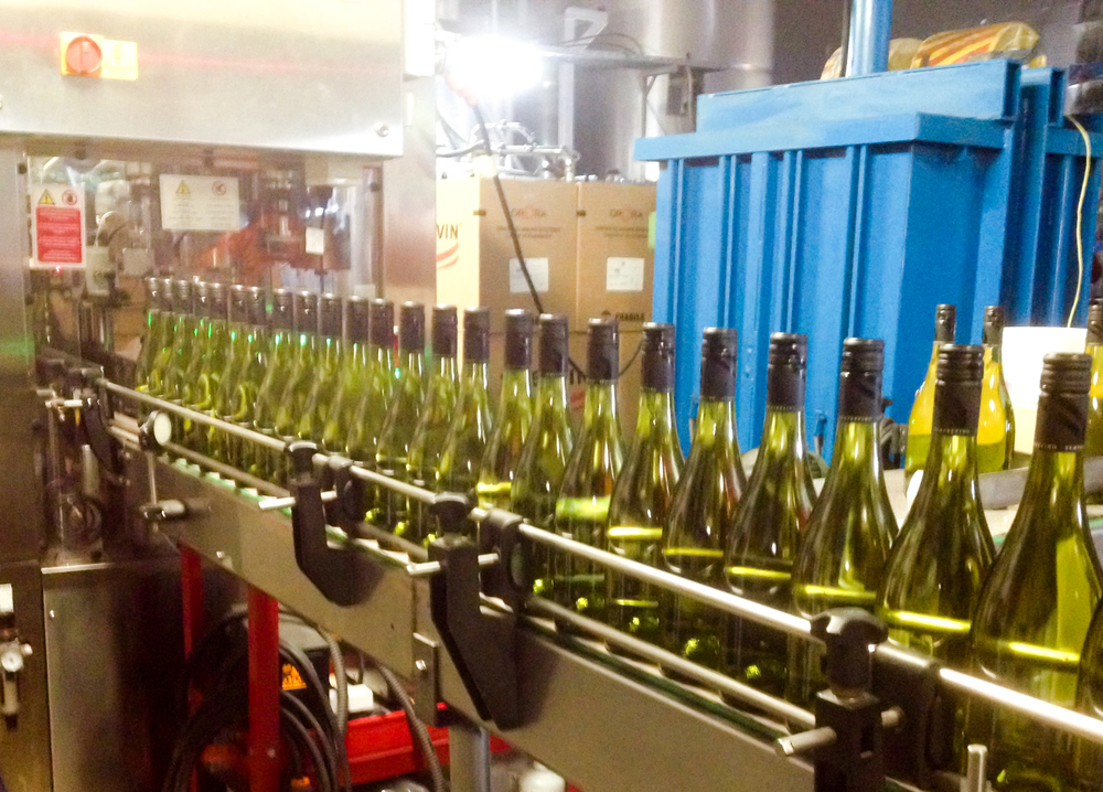 Our new Pinot Grigio rolling through the line