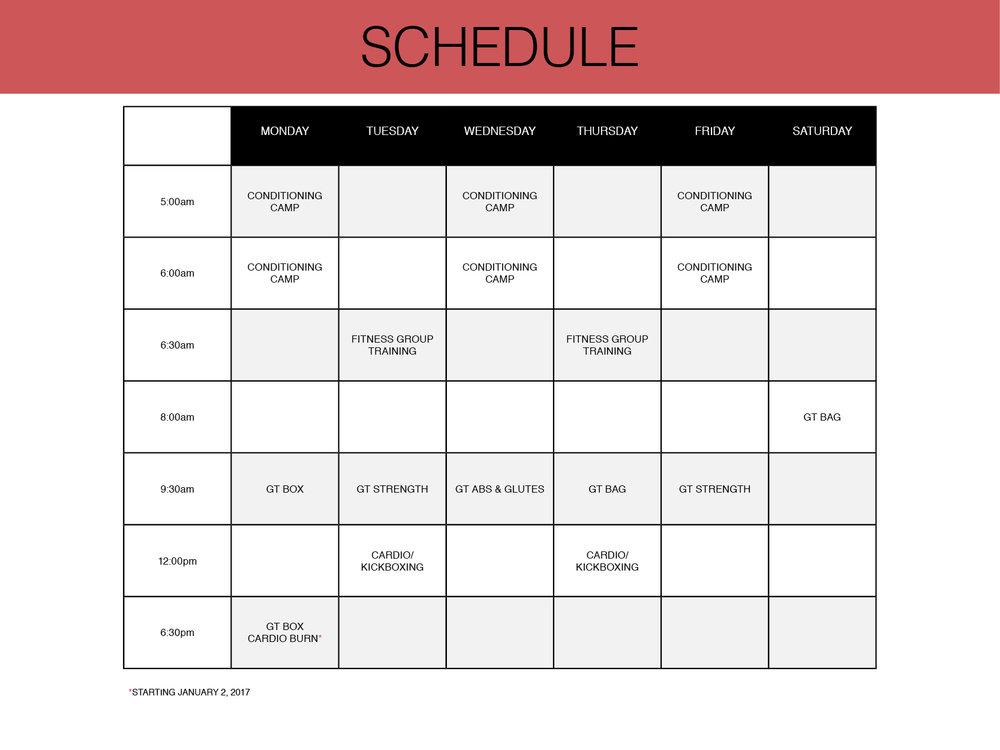 GT Pro Trainer 2017 Class Schedule