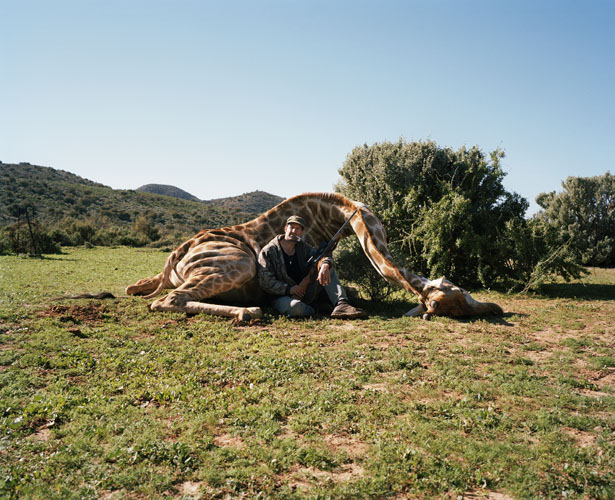 hunter with giraffe, ladysmith, south africa