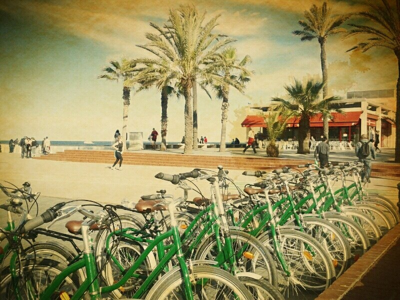 Bike Rental and Tours in Barcelona with Green Bikes