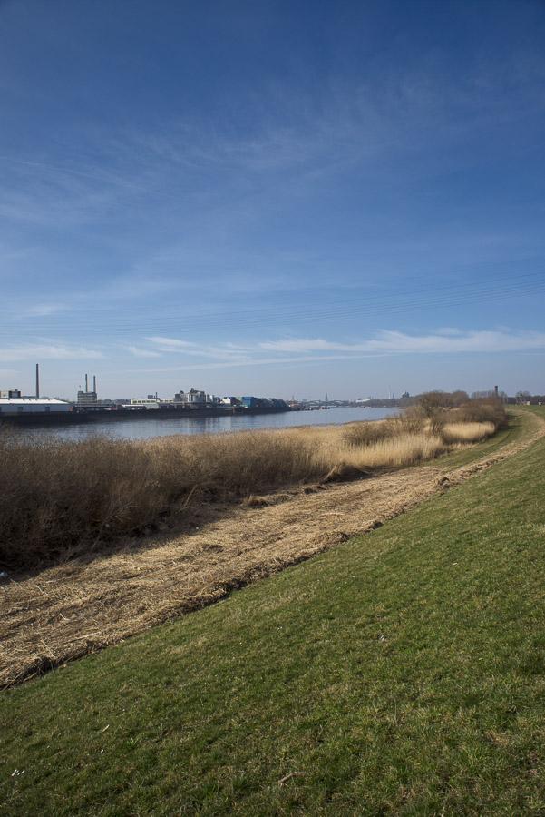 Die Norderelbe mit Blick auf die Stadt.
