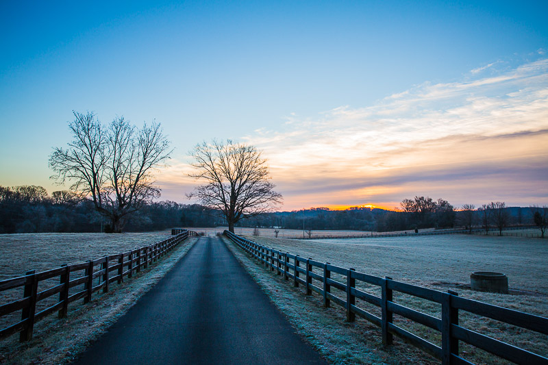 Winter Morning in TN