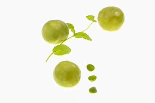 wiki fruit 2.jpg