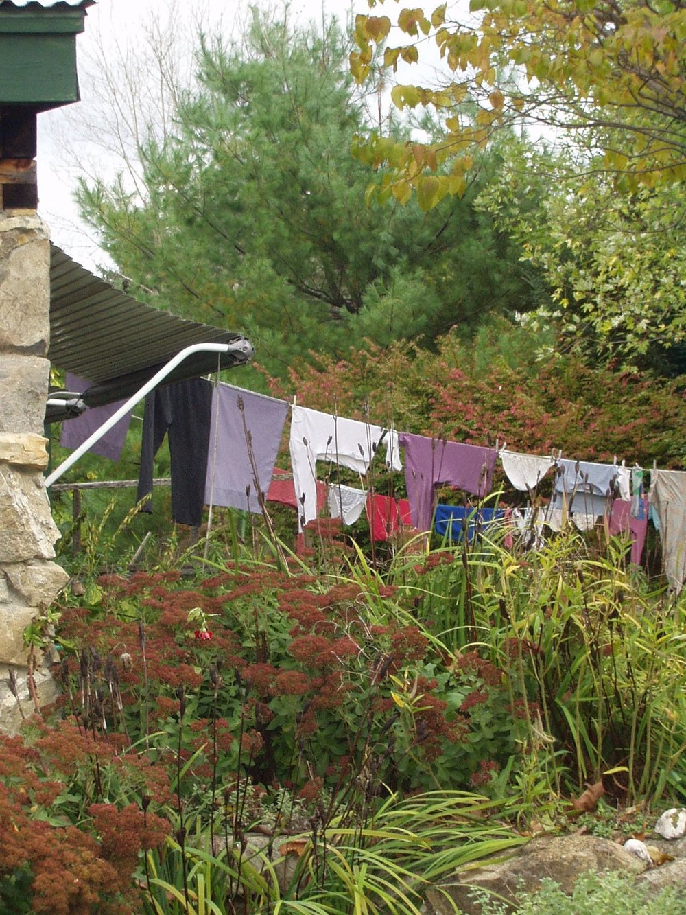 Autumn clothes line.jpg