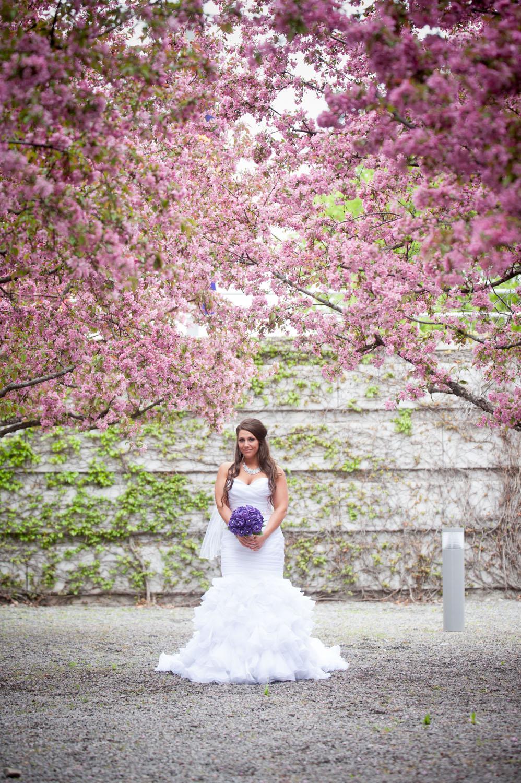 cardinwedding024.jpg