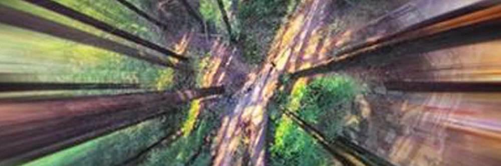 03_aerial.jpg