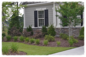 Myrtle Beach Lawn care and landscaping client.
