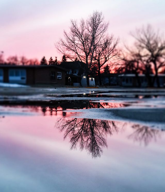 pink reflection.jpg