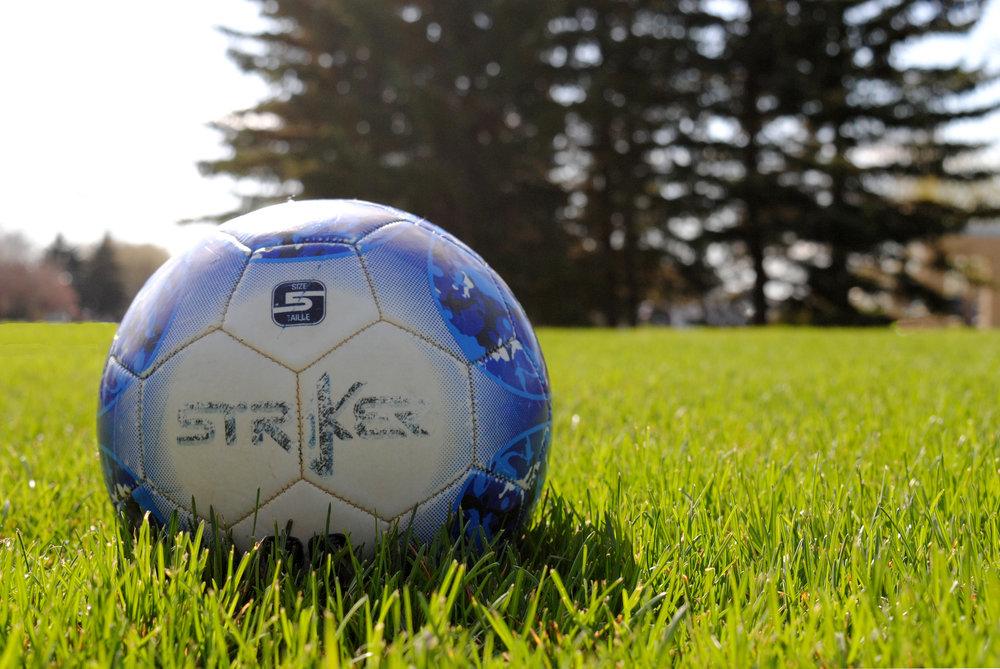 Soccer Ball Still Life.JPG