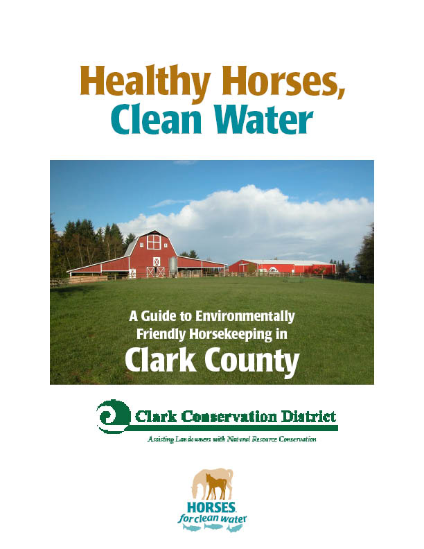 horses for clean water.jpg