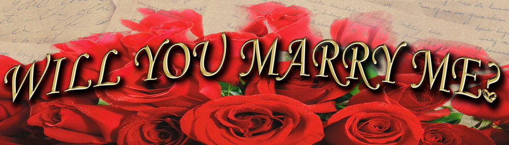 Will you marry me banner copy.jpg
