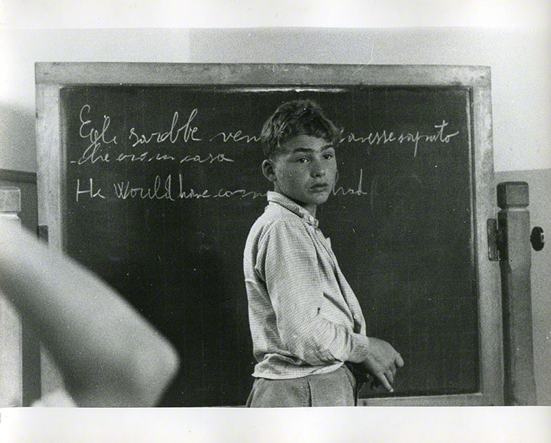 Young boy standing in front of a blackboard translating Italian into English