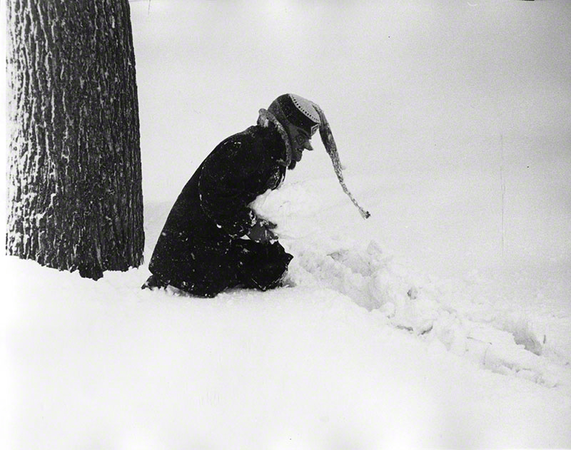 Figure wearing ski mask/hat crouching in the snow next to tree trunk