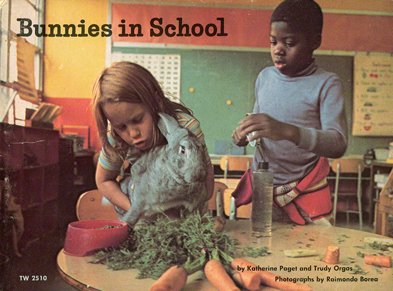Bunnies in School (1974)