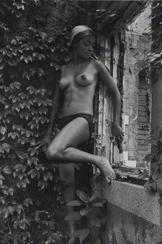 Garden Beauty II (1963)